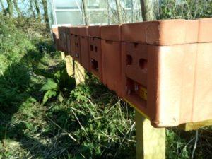 Mating Hives