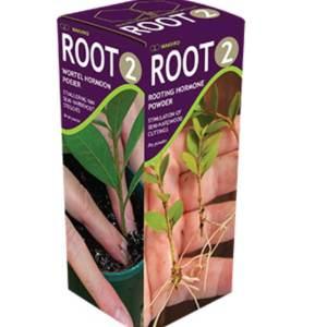 Root hormone powder