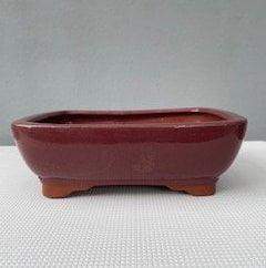 Maroon bonsai pot (rectangle)