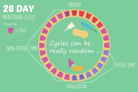 BISH reproductive bits 28 day menstrual cycle