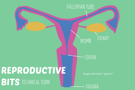 BISH reproductive bits