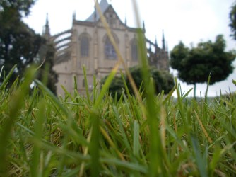 Nicely cut grass in front of St Barbara's church.