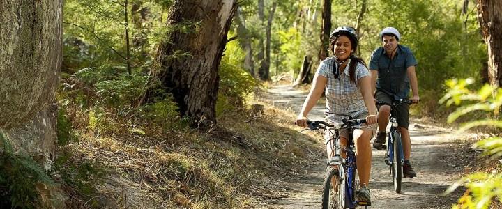 Bisiklet Temel Eğitimi – Şubat 2019 Kayıtları