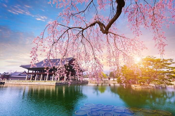 Trip Korea murah 2020