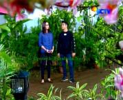 FotoThea dan Galang Ganteng-Ganteng Serigala Episode 71