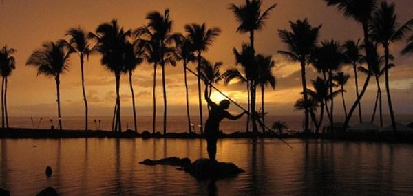 Bistro Chic, Hawaii Bound