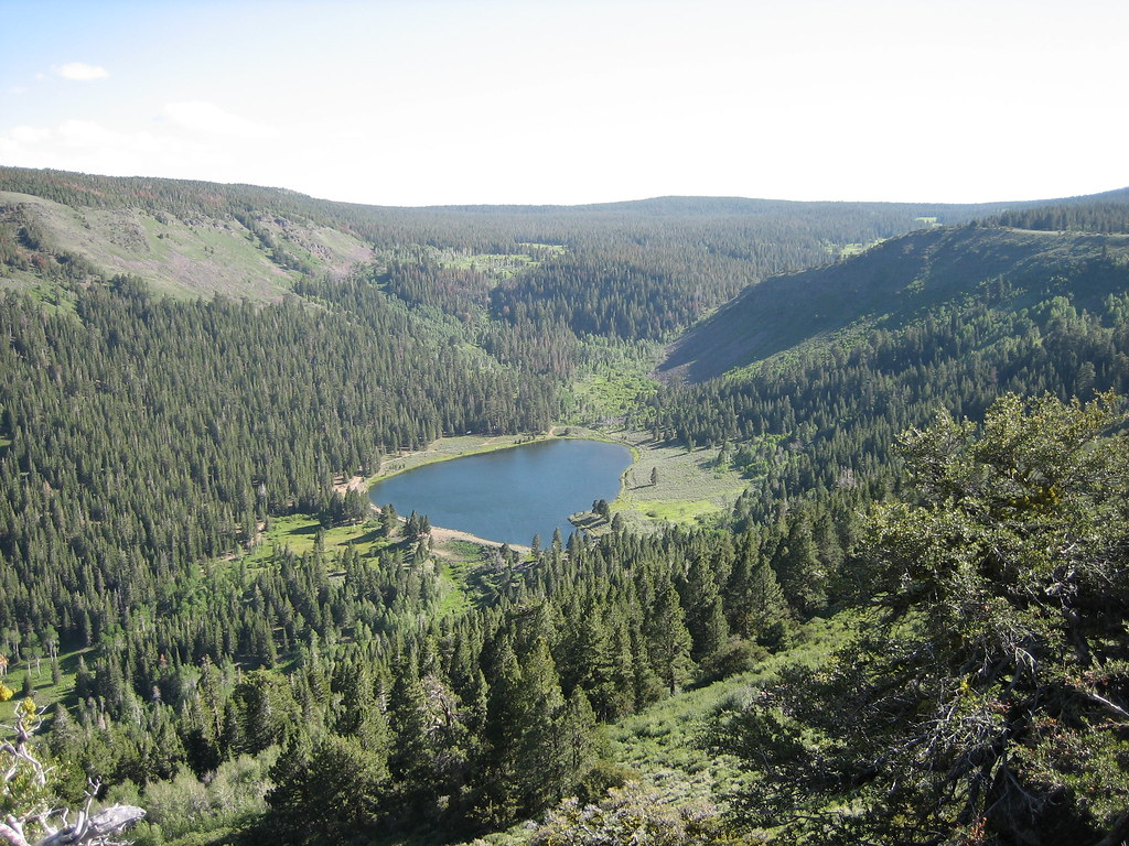 Modoc National Forest Lost lake