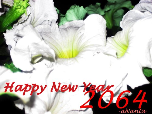 Happy New Year 2064