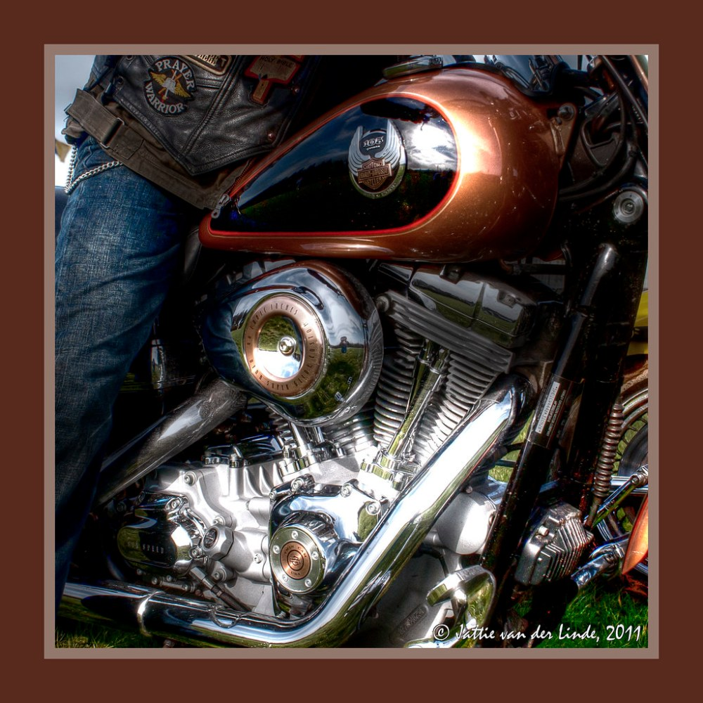 medium resolution of harley davidson