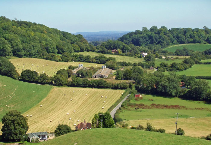South Downs, Hampshire, East Meon