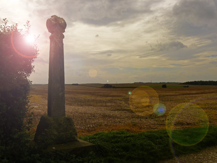 Towton, battlefield, Wars of the Roses