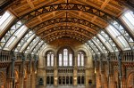 NATURAL HISTORY MUSEUM (The)