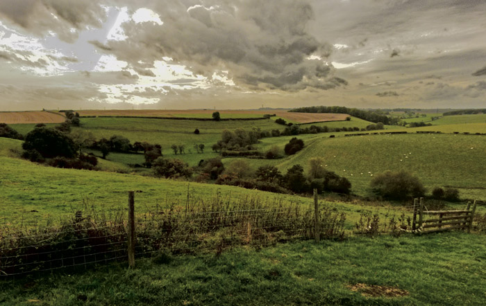 Bloody meadow, Towton