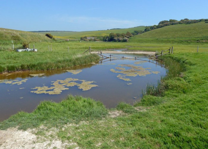 Salt water lagoon behind the beach at Cuckmere Haven