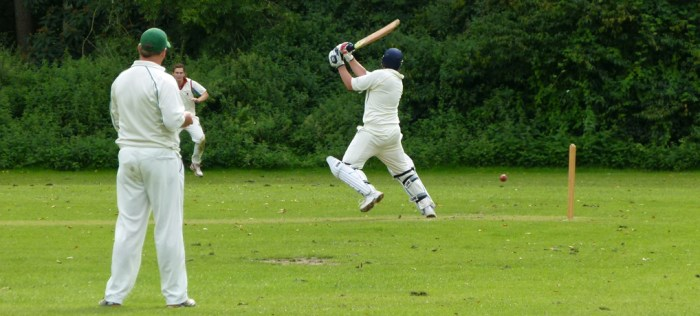 Cricket, match, batsman, Barrington Court