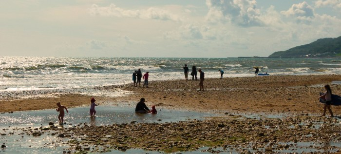 Families, fossil hunting, beach, Charmouth