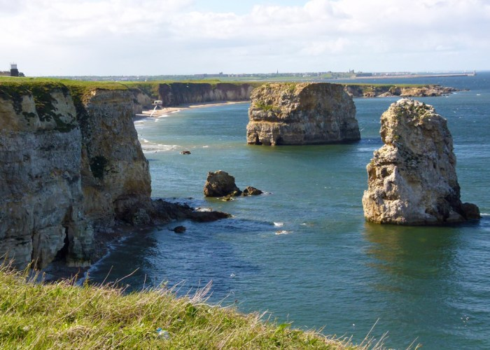 Marsden Bay, Tyne & Wear, beauty spot, seabirds