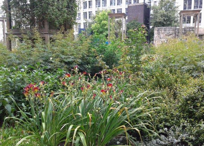 hrist Church, Greyfriars, garden, BT