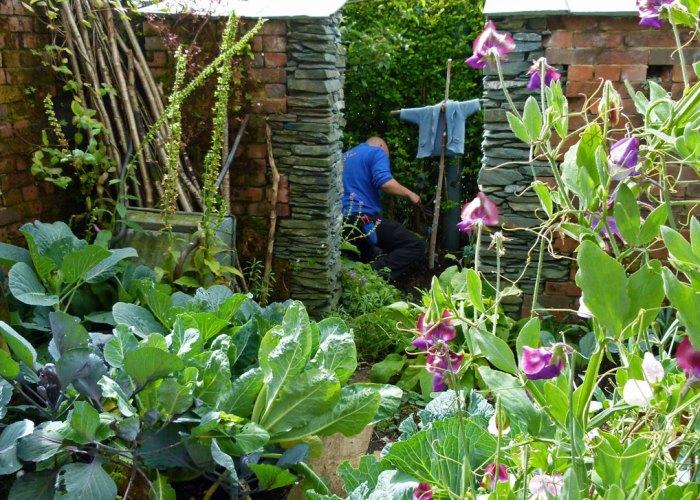 Peter Rabbit, Garden, World of Beatrix Potter