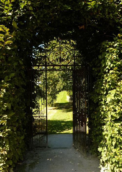 Beech arch, Summer garden, Holker