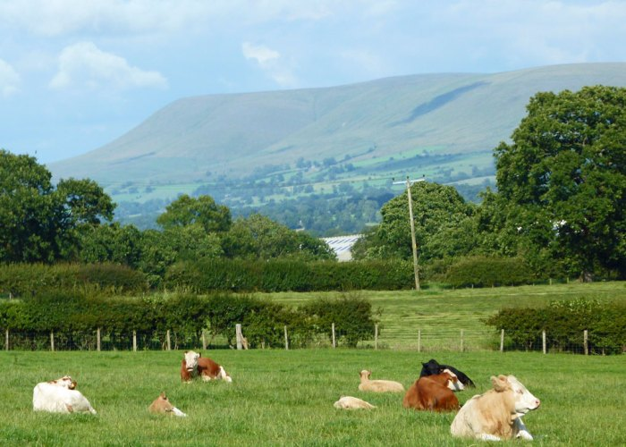 Pendle Hill, Lancashire countryside