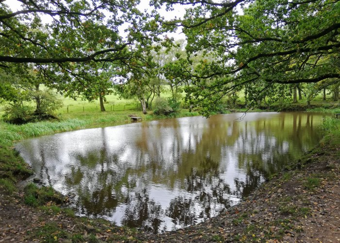 Lake in the woods at Gawthorpe Hall