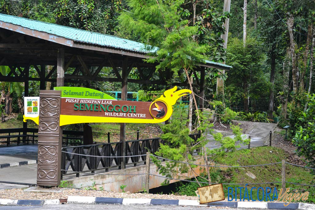 semenggoh wildlife centre