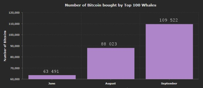 Chart-top-100-bitcoin-whales