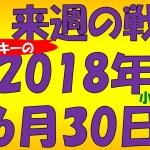FX スノーキー(小手川征也)の来週の戦略とビットコイン情報も 2018年6月30日