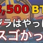 【仮想通貨】クジラ目撃情報!!遂に始動か!?