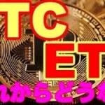 【仮想通貨】ビットコイン暴落 今後の予想