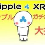 【仮想通貨】リップル(XRP)ビットコイン(BTC)ガチホ組・大損、ガチホVS売買
