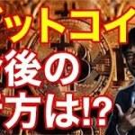 ビットコイン(BTC)【上念司】(広告なしラジオ)仮想通貨市場はもう終わり?ネムはオワコン!コインチェック登録!