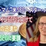"""""""クリプトマム""""米SECへスター・パース氏、ビットコインETFに向けて取引所の迅速な規制をSECに要請【仮想通貨】"""