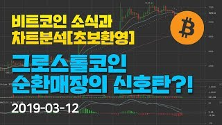 [Bitcoin] 비트코인 소식과 차트분석(초보환영) 7화 -그로스톨코인 순환매장의 신호탄?!- Feat. 이안 트레이더 #그로스톨 #비트코인 #순환매