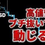 【FX】ロスカット食ってく相場、高値安値ブチ抜こうが1ミリも動じるな(2019年3月27日)