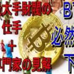 ビットコイン必然的な下落 世界最大手財閥の仕手+海外専門家の見解