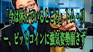 【仮想通貨】「今は休んでいるところ」トム・リー、ビットコインに強気姿勢崩さず💹