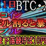 【仮想通貨】ビットコイン・リップル ビットコイン1万ドル付近。下抜けで暴落の可能性も!?