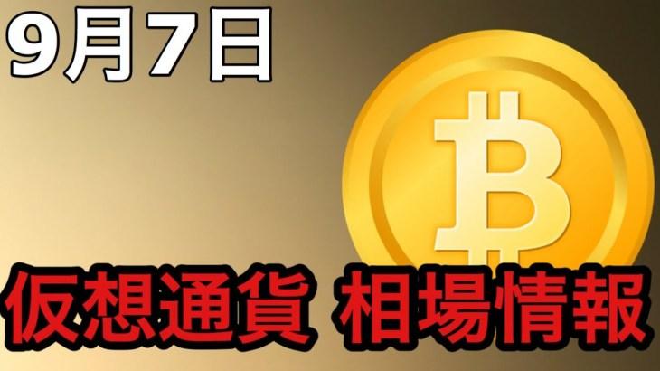 9月7日仮想通貨相場情報~モニカの暗号資産ニュース情報局~