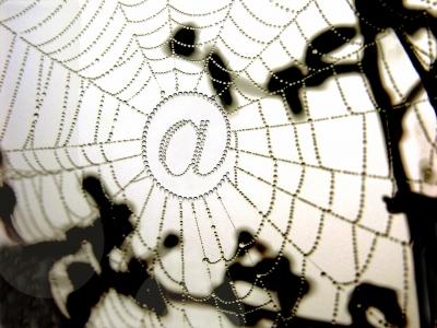 107969_web_R_by_pepsprog_pixelio.de