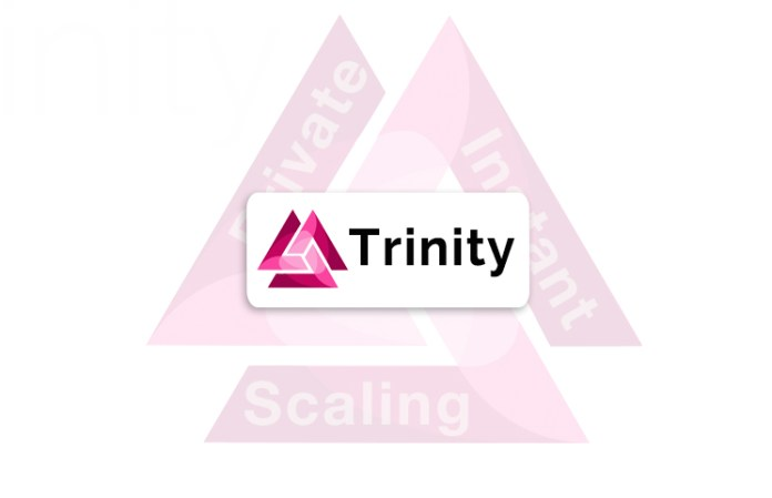 Trinity Lightning Network Review