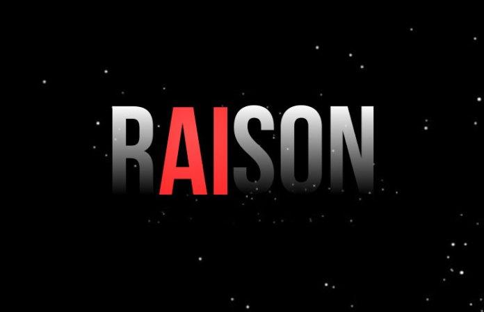 Raison RSN ICO Review