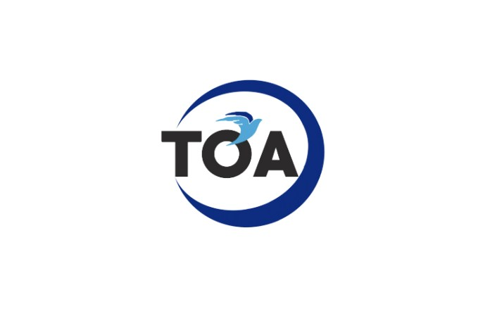TOA Coin Review