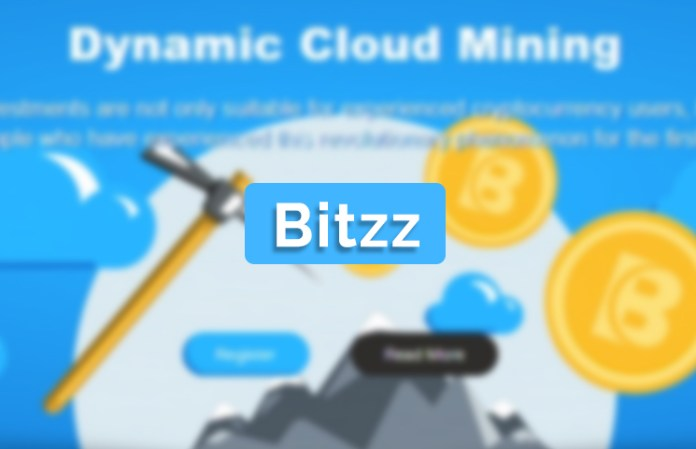 Bitzz Ltd Review