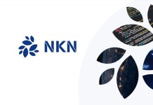 NKN (New Kind of Network)