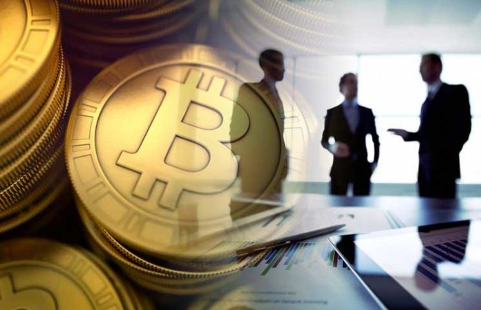 Do Early Bitcoin Investors and Backers Hold Advantages Over Recent Crypto Asset Supporters?