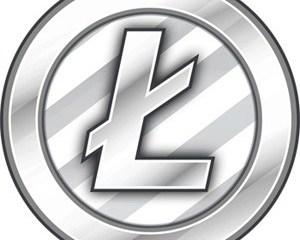 Litecoin Nasıl Satın Alınır - Adım Adım Tam Rehber
