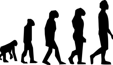 The Evolution of Bitcoin According to Darwinism: No 'Eureka Moment'