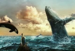 bitcoin, 2019, whales